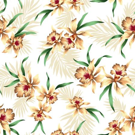 pattern of Cattleya Stok Fotoğraf