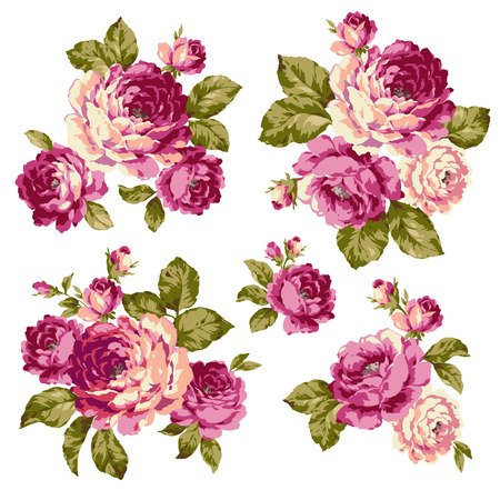 pink roses: The illustration of rose