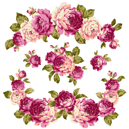 The illustration of rose