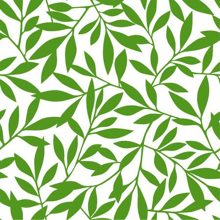 show plant: Leaf pattern