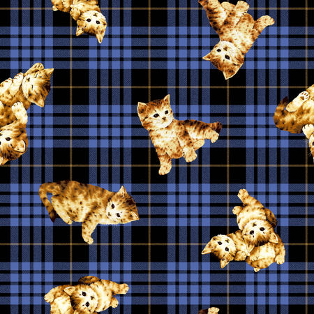 whim: Pattern of cat