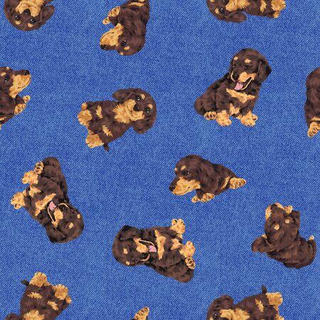 whim: Dog pattern Stock Photo