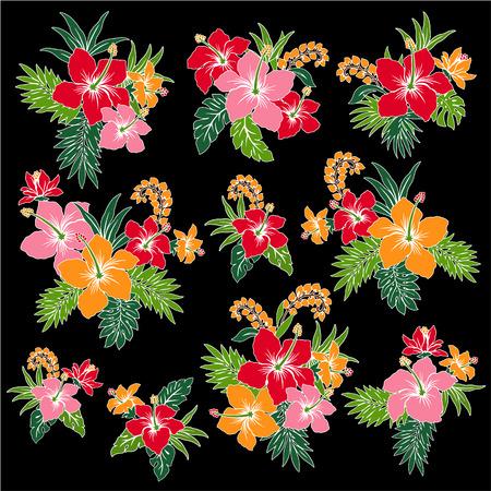 florid: illustration of Hibiscus Illustration