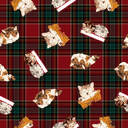 Pattern of cat