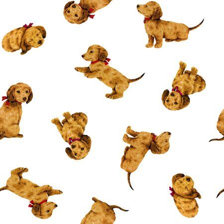 Dog pattern Reklamní fotografie
