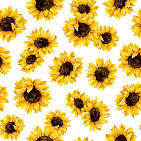 Sunflower pattern 스톡 콘텐츠
