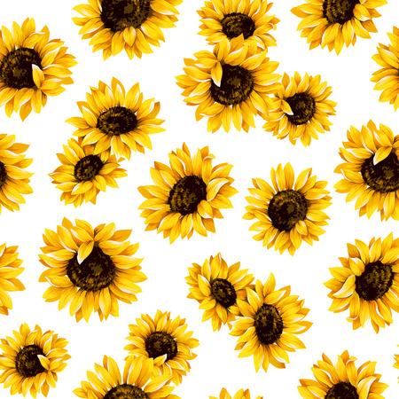 Sunflower pattern Stock Photo