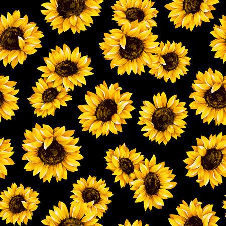 sunflower: Sunflower pattern Stock Photo