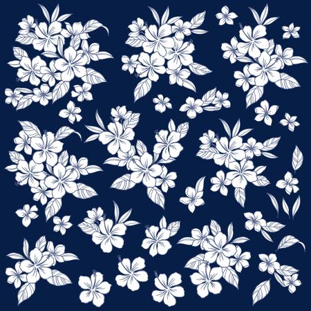 tahiti: Hibiscus illustration