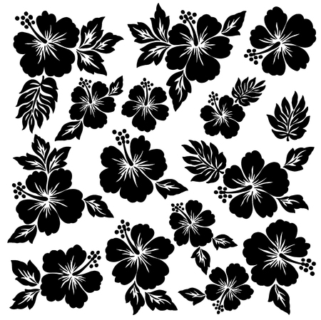 Hibiscus flower illustration 版權商用圖片 - 42516034