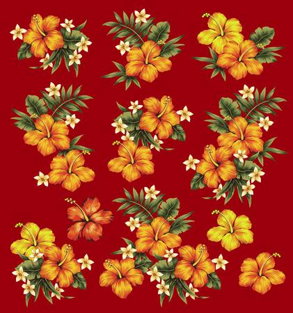 hibiscus flower: Hibiscus flower illustration