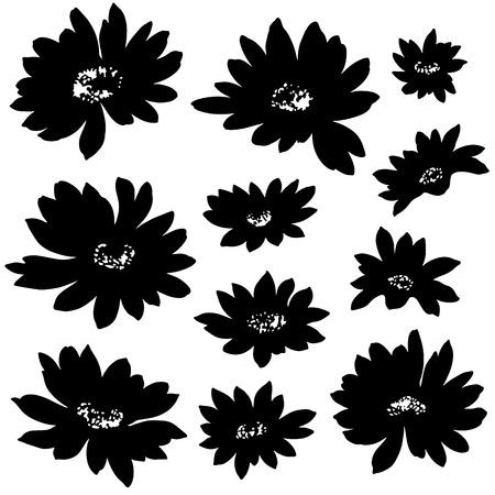remarkable: Flower illustration   Illustration
