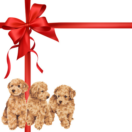 puppy: Illustration of dog and ribbon