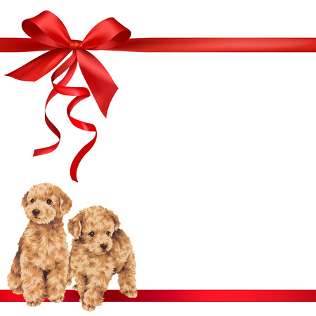 cute puppy: Illustration of dog and ribbon