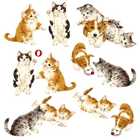 Pretty cat illustration
