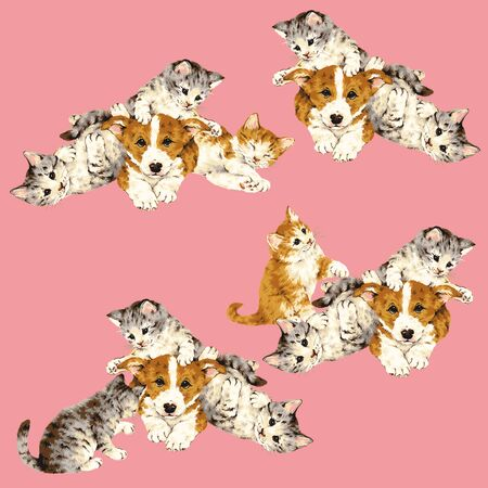 whim: Pretty cat illustration