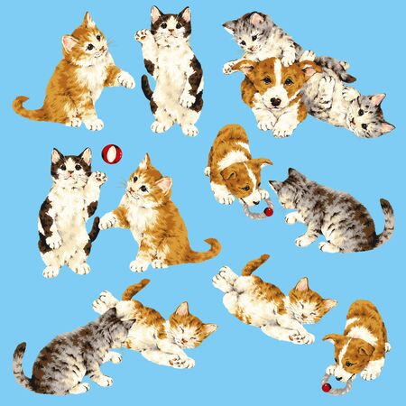 gambol: Pretty cat illustration