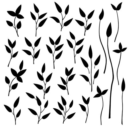 simplification: Leaf illustration