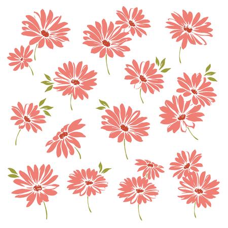 margriet: Marguerite flower illustration