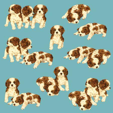 whim: Illustration of dog Stock Photo