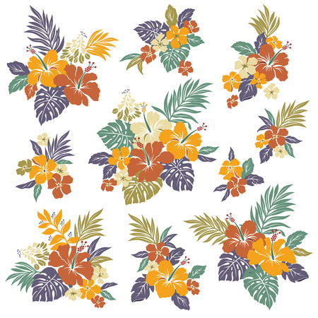 hibiscus flowers: Hibiscus fiore illustrazione Vettoriali
