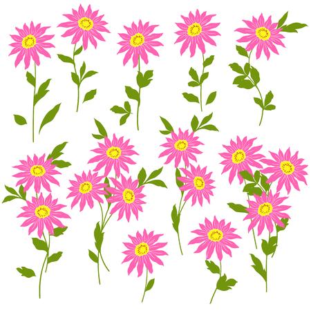 corsage: Flower illustration object Illustration
