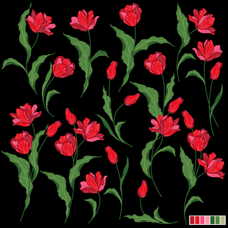showy: Flower illustration object Illustration