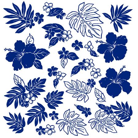 ibiscus: Hibiscus fiore illustrazione Vettoriali
