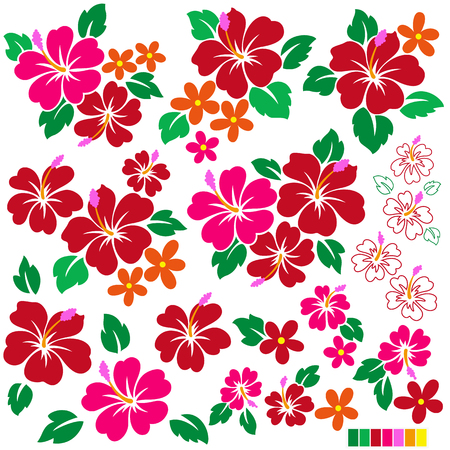 tropical: Tropical flower illustration