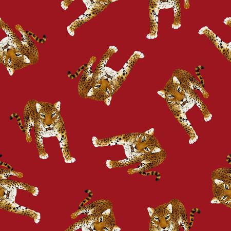 pardus: Panther pardus pattern Stock Photo