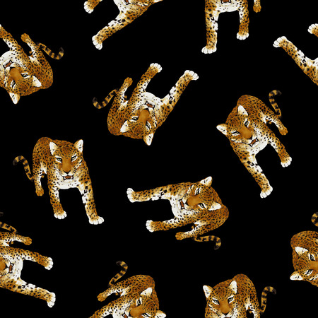 Panther pardus pattern Stock Photo