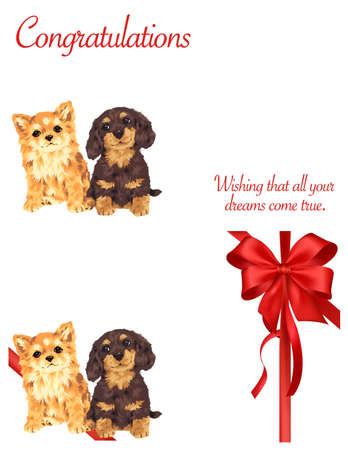 amiability: Decoration  of dog and ribbon Stock Photo