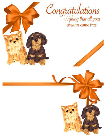 picture card: Decoration  of dog and ribbon Stock Photo