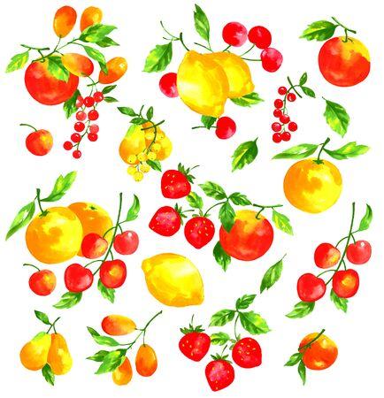 수채화와 과일