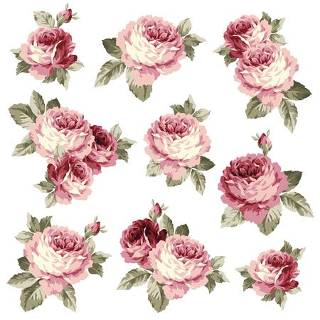 Rose ejemplo de la flor