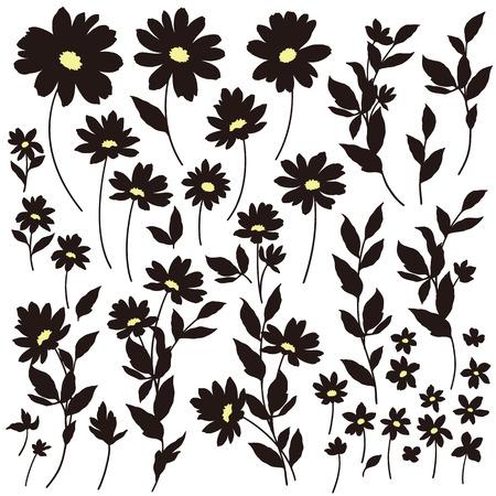 resplendent: Flower illustration object Illustration
