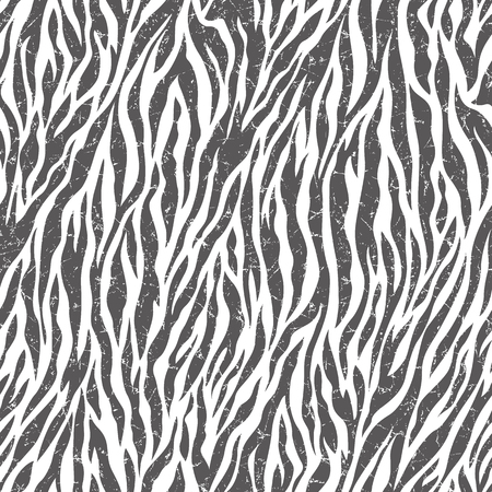 irregularity: Zebra pattern illustration Stock Photo