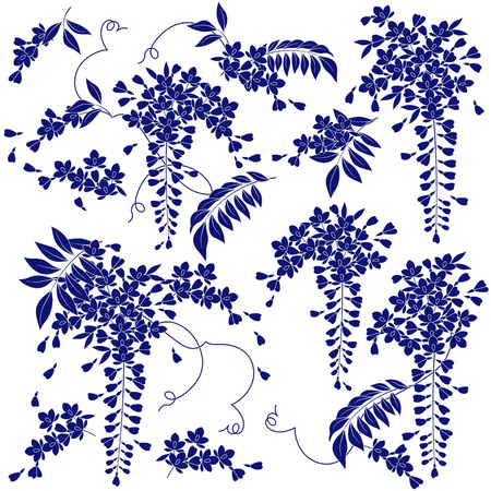 Japanse stijl blauweregen