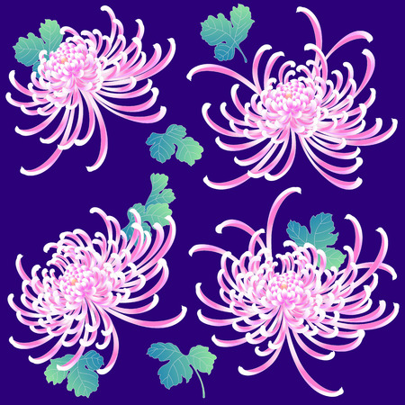 handicrafts: Japanese style Chrysanthemum flower Illustration