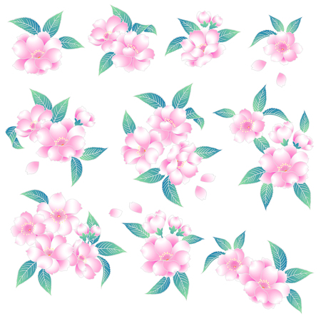 japanese style: Japanese style cherry blossom Illustration