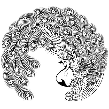 japanese style: Japanese style peacock Illustration