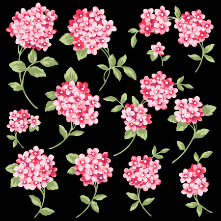 Flower illustration material Illustration