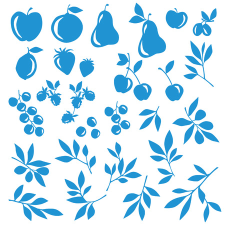 simplification: Fruit leaf illustration