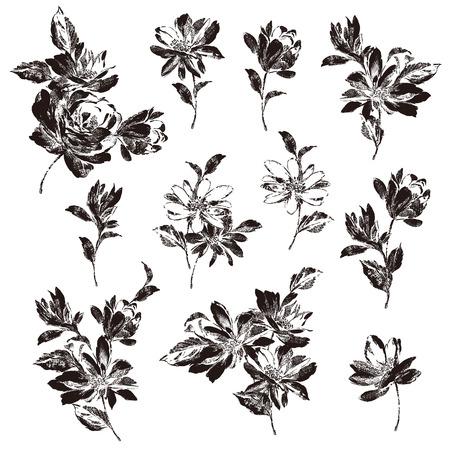 Flower illustration material