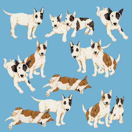 dog: Pretty dog illustration Stock Photo