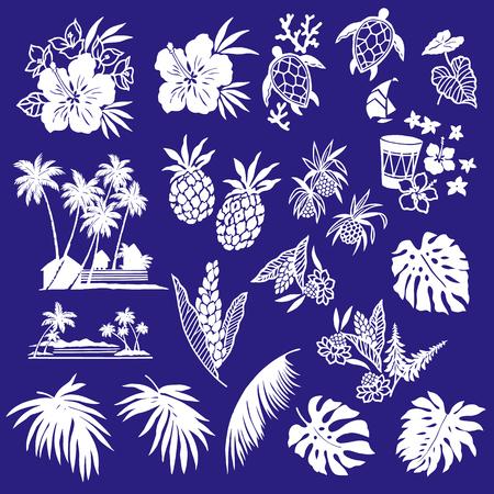 Hibiscus et ananas Banque d'images - 79240414