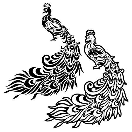 Illustration of the peacock, 向量圖像
