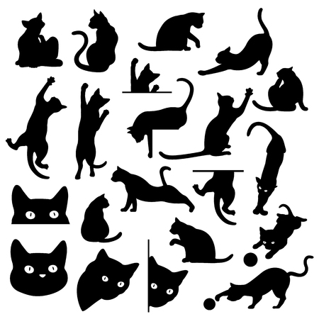 Set of Pretty cat illustrations