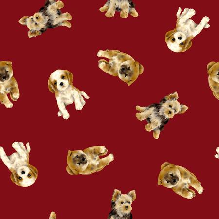 Pretty dog pattern 写真素材
