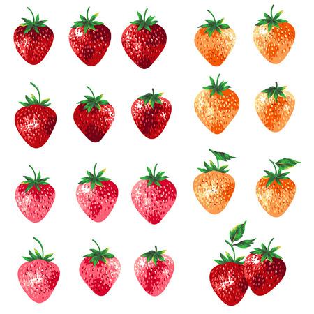 Ilustração do conjunto de morango Ilustración de vector